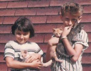 Danny Marrian Kittens