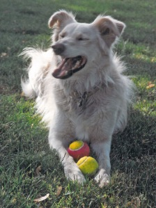 Meg w tennis balls