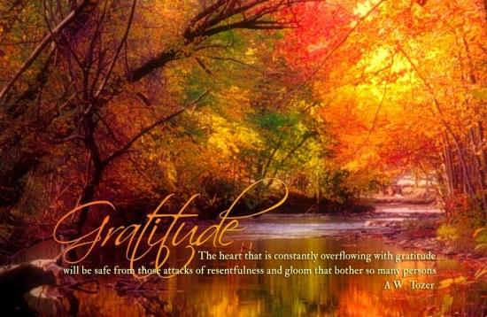 Gratitude fall scenery