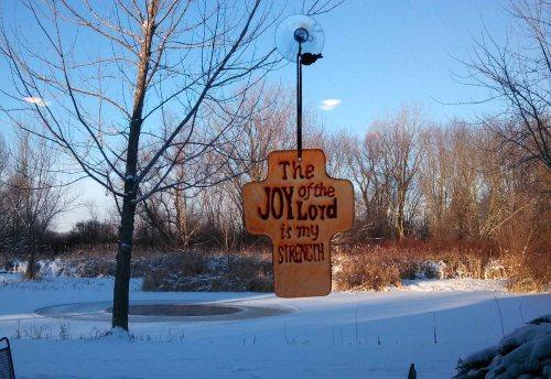 Joy Cross and snowy pond