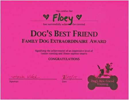 Floey's award for successfully completing the Intermediate Class.