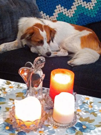 Floey Candles 3