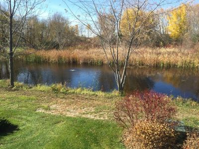 2015-10-26 Stone Meadows Pond