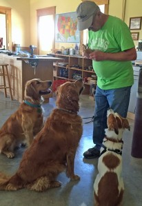 Treat Time in Shop 10-11-15