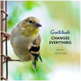 Gratitude bird