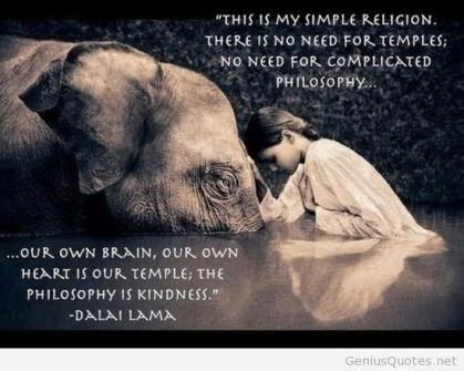this-is-my-simple-religion-there-is-need-for-temples-no-need-for-complicated-philosophy-our-own-brain-our-own-heart-is-our-temple-the-philosophy-is-kindness-dalai-lama