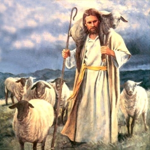 Jesus_Sheep-01